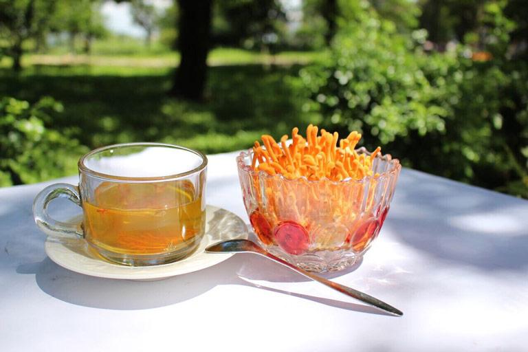 Đông trùng hạ thảo tươi dùng để pha trà tốt cho sức khoẻ và tinh thần
