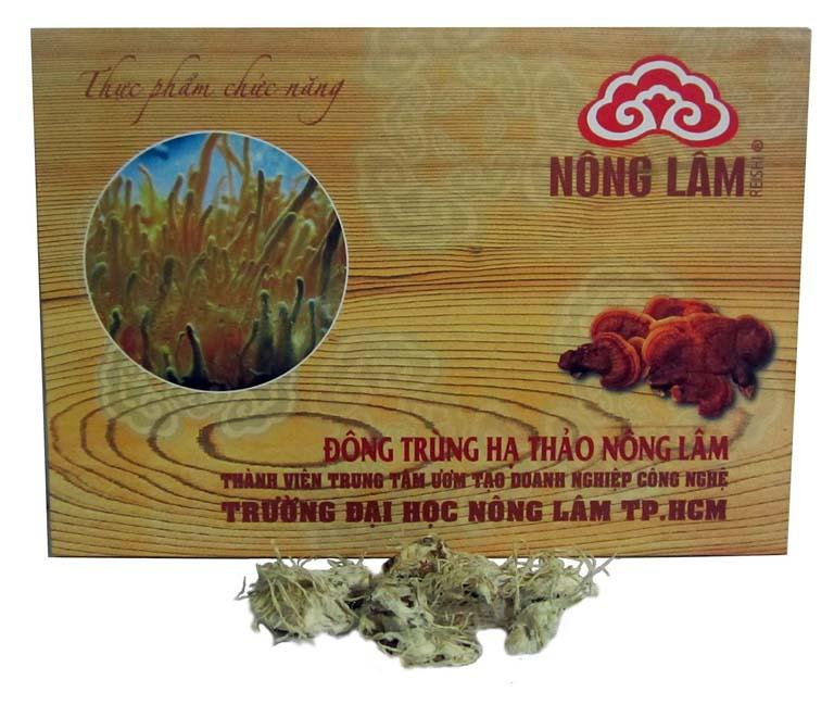 Mua đông trùng hạ thảo Nông Lâm