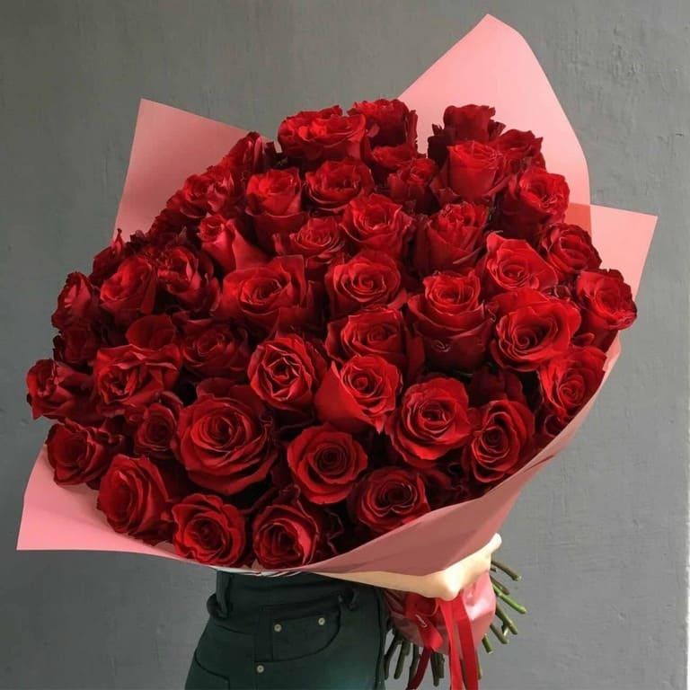 Hoa hồng nhung, tình yêu chân thành gửi đến nàng trong một ngày ý nghĩa